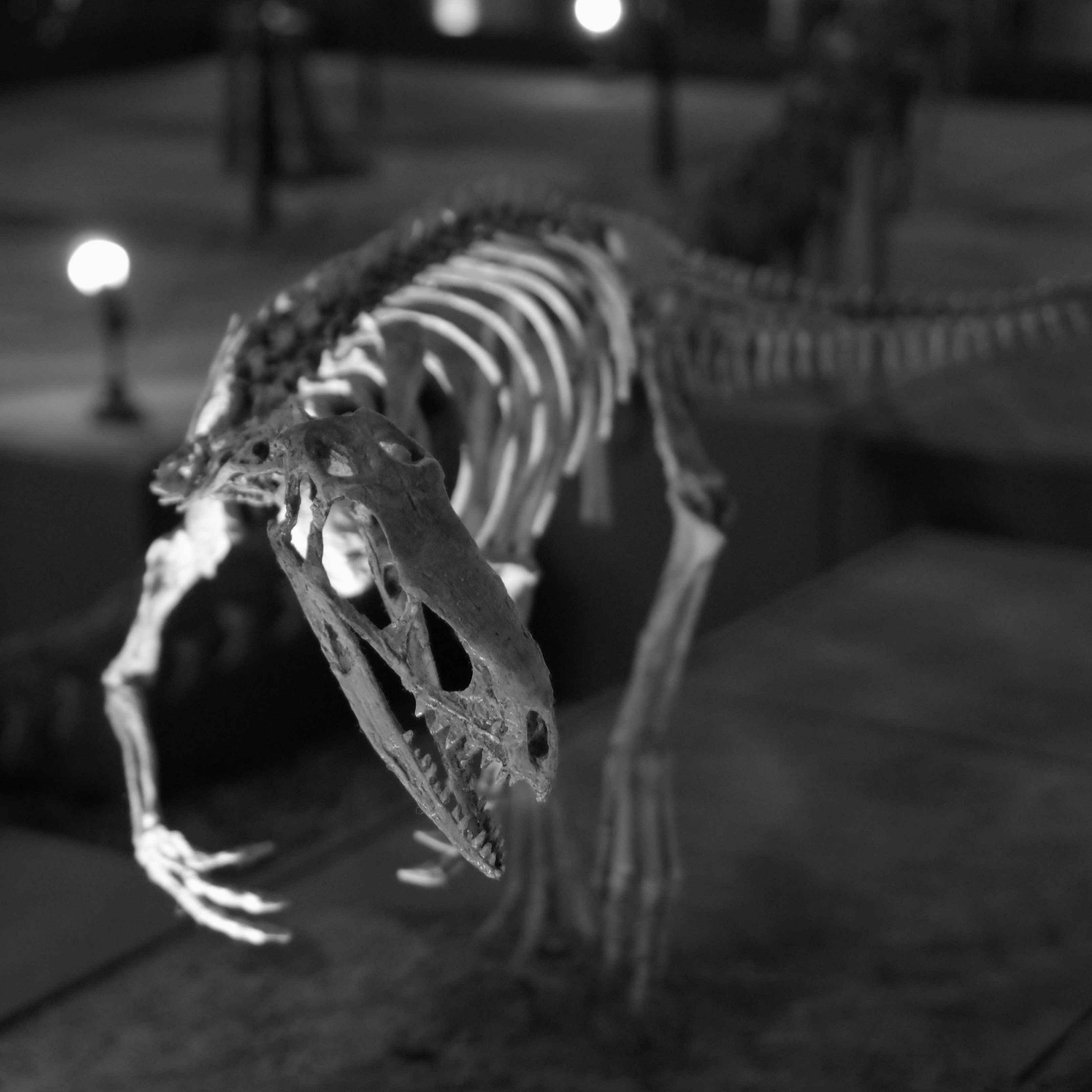 国立科学博物館の利用について